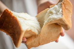 にぎわい の 森 魔法 の パン